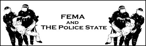 FEMA PS